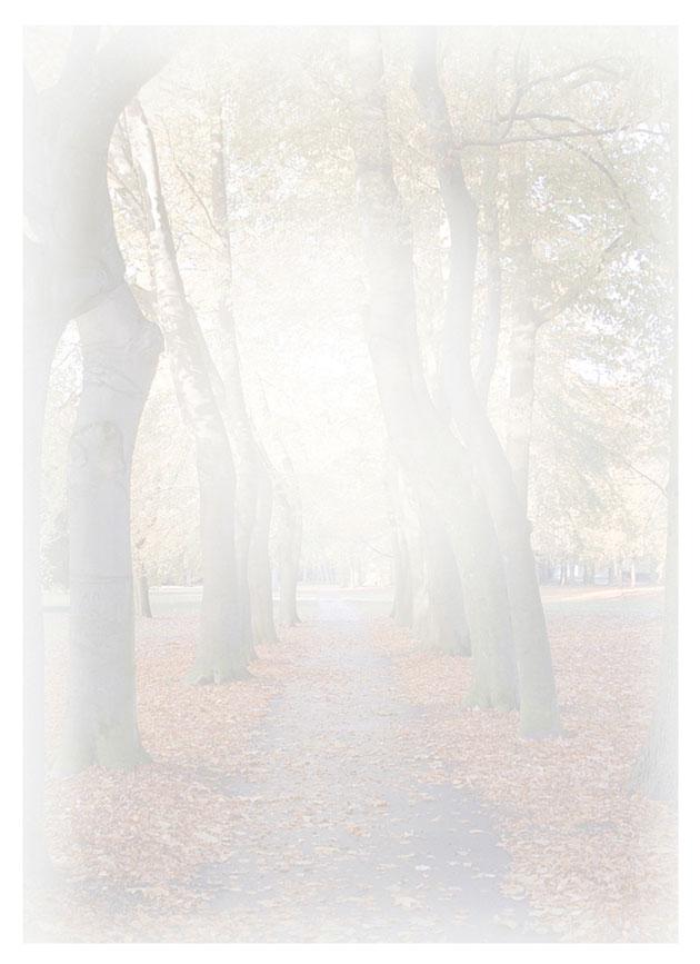 Rouwkaart 'De Boslaan'