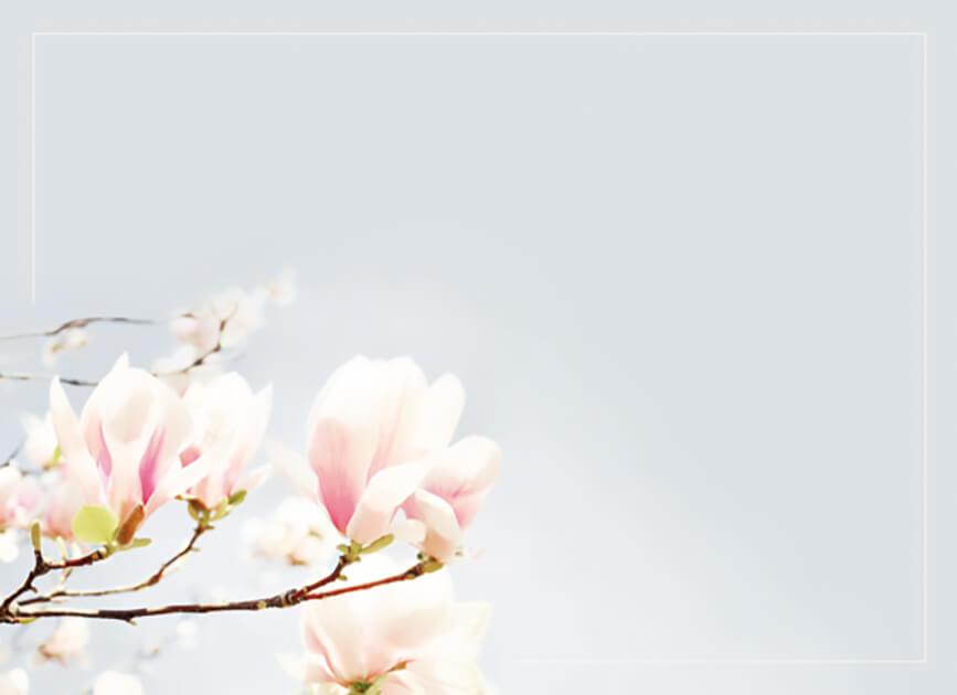 Rouwkaart 'De Magnolia Tak'