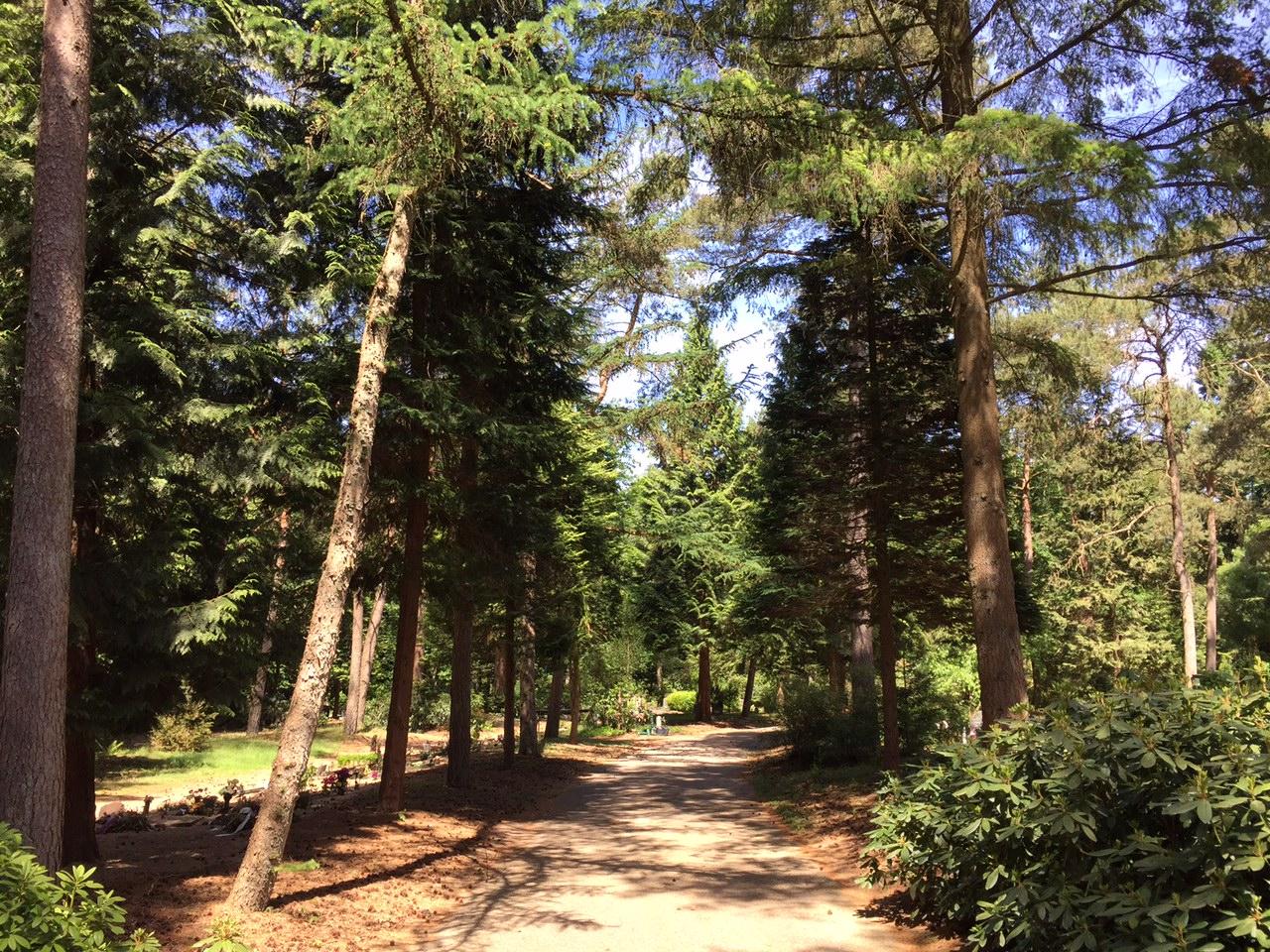 Natuurbegraafplaats Doorn
